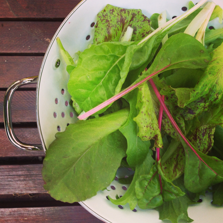 Daylesford Salad Box